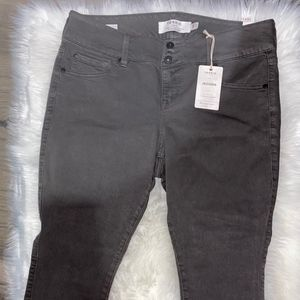 TORRID JEANS JEGGINGS 14 EXTRA SHORT